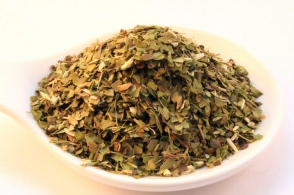 Green Mate (100 gram, 50 kopjes)