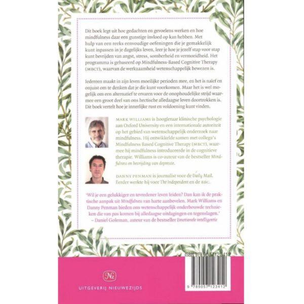 Mindfulness (boek)